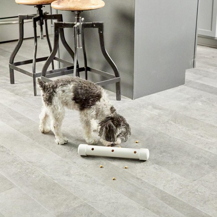 HH Puppy PVC slow feeder dog