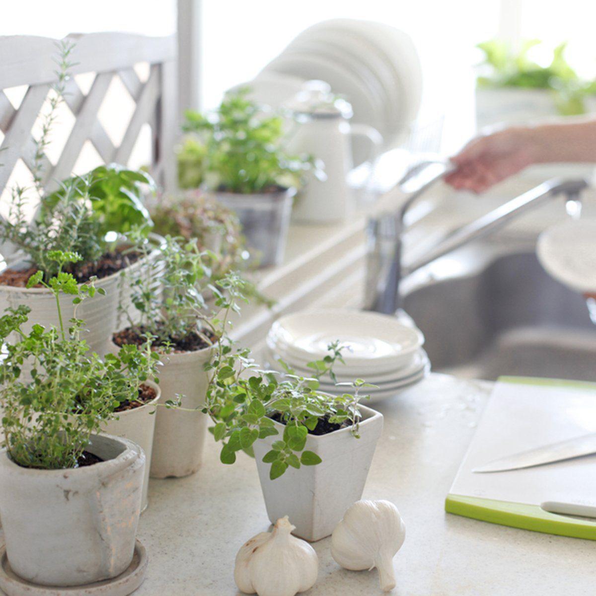 Herbs kitchen garden and woman; Shutterstock ID 159418133