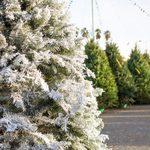 How To Make a Flocked Christmas Tree
