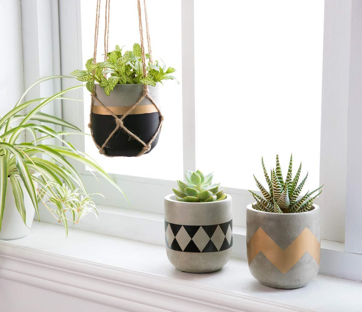 Geometric Plant Pots