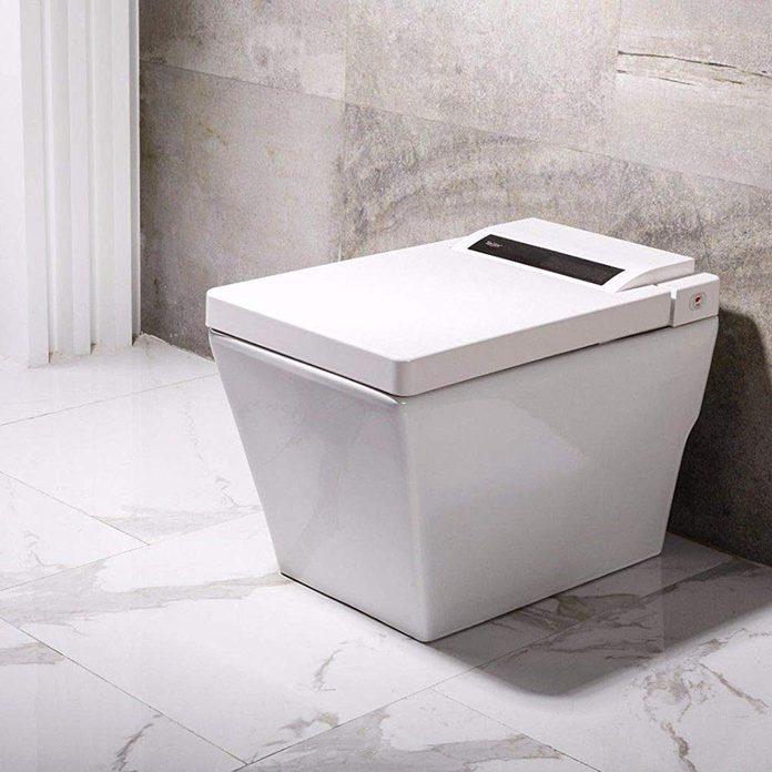 dyconn-toilet