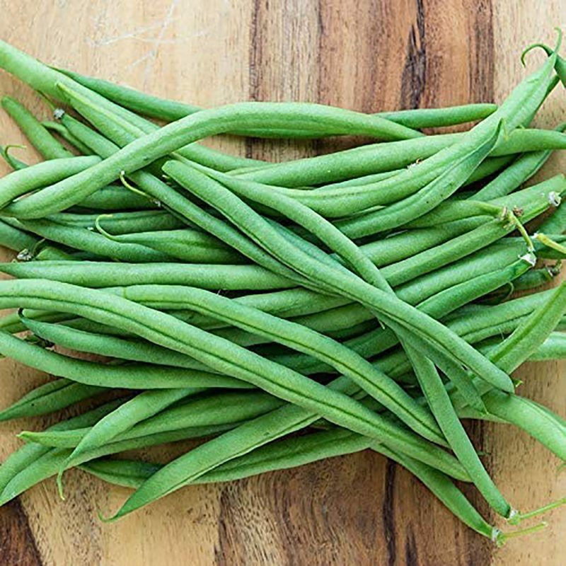 string beans grow at home