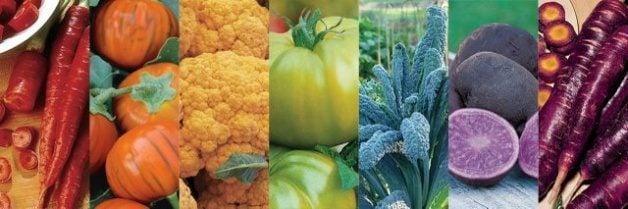 rainbow garden vegetables
