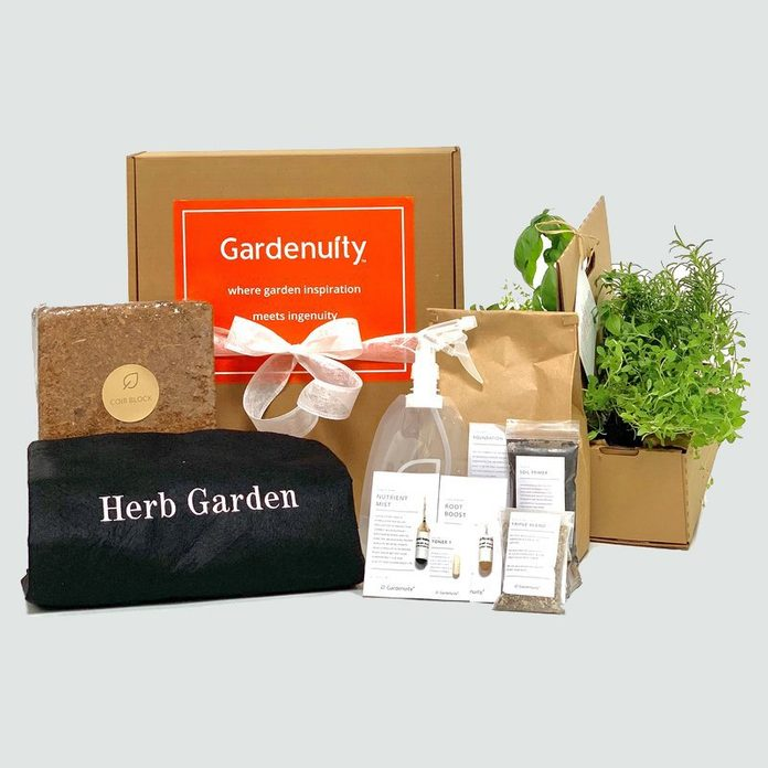 herb garden kit