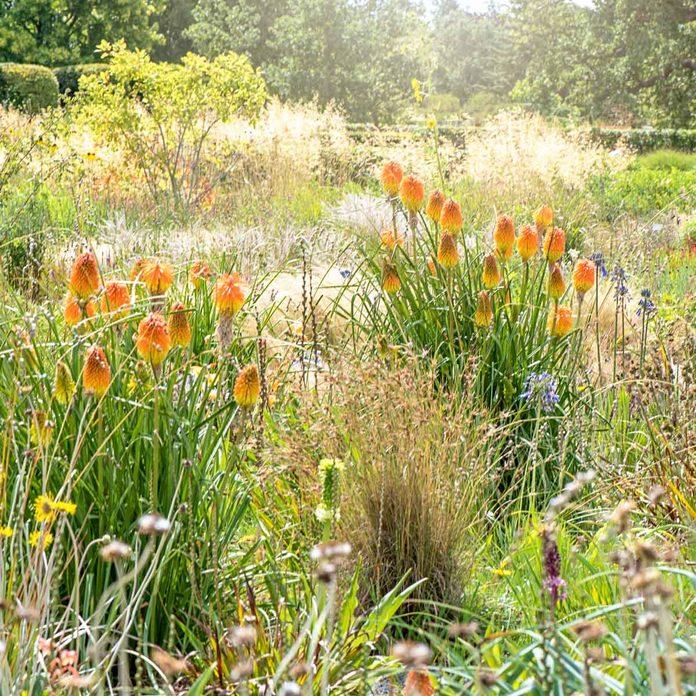 Prairie Garden