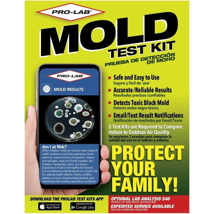 Mold test kit