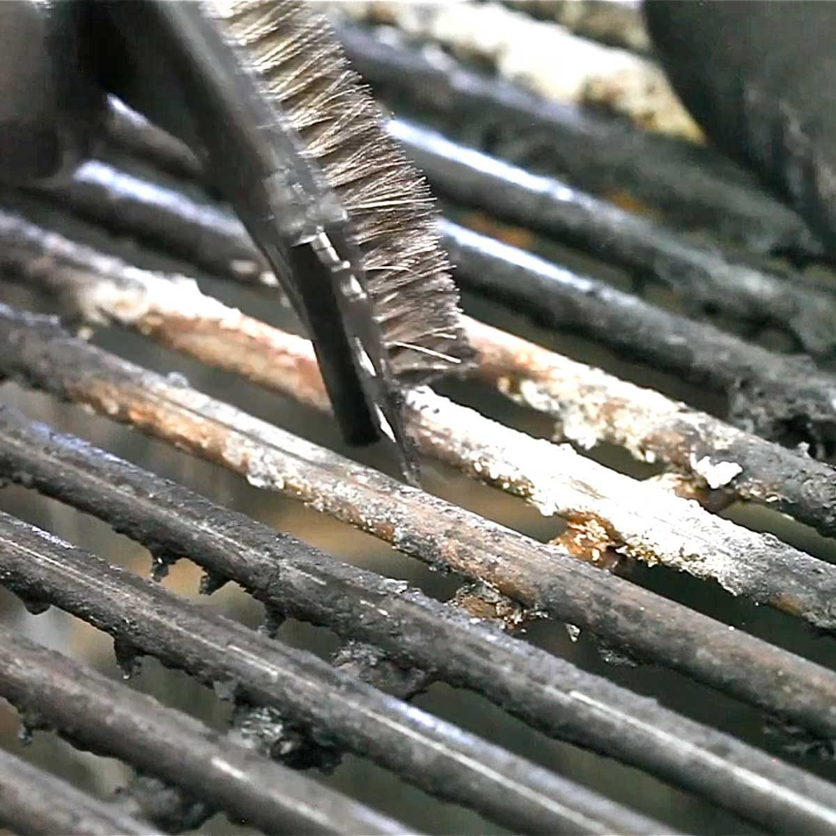 Preheat and Clean the Grill