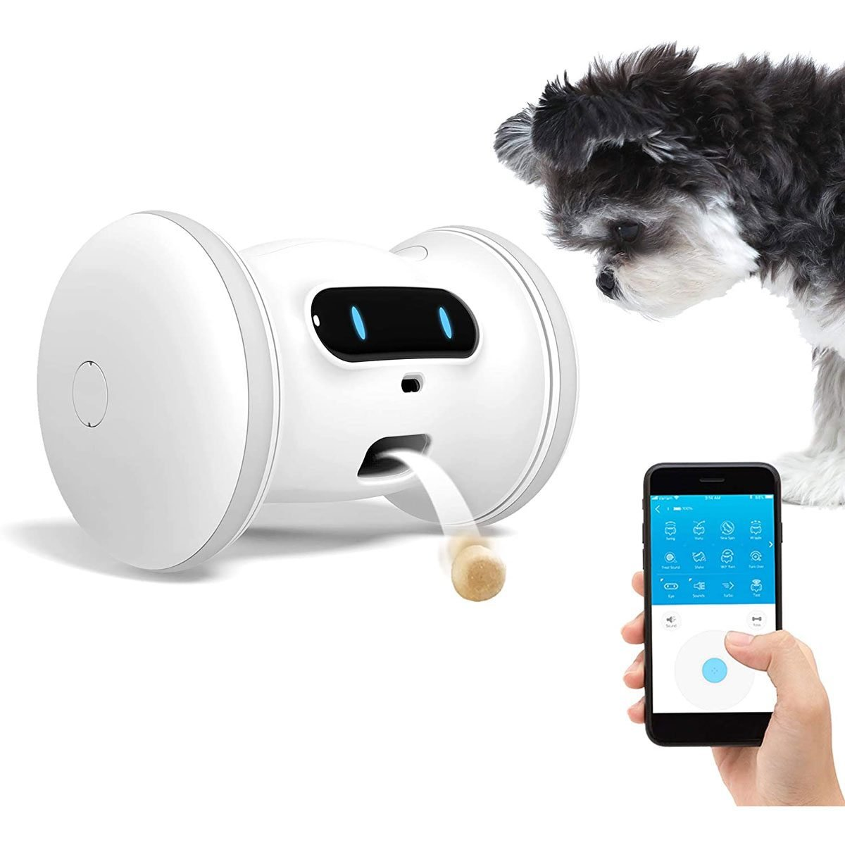 Pet fitness robot