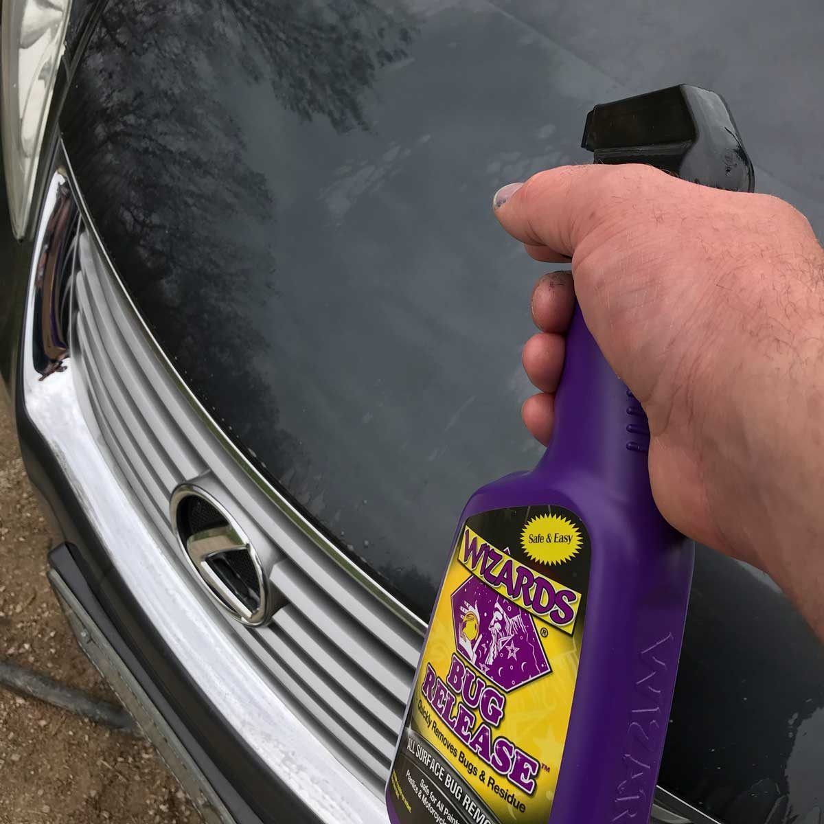 Remove Stubborn Bug Stains