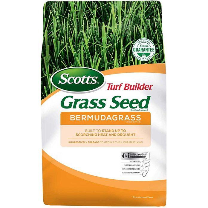 grass-seed-