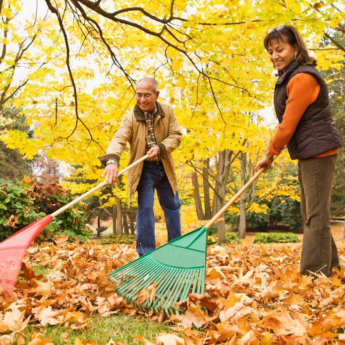 couple raking autumn leaves