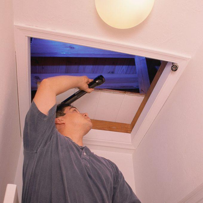 Man inspecting an attic