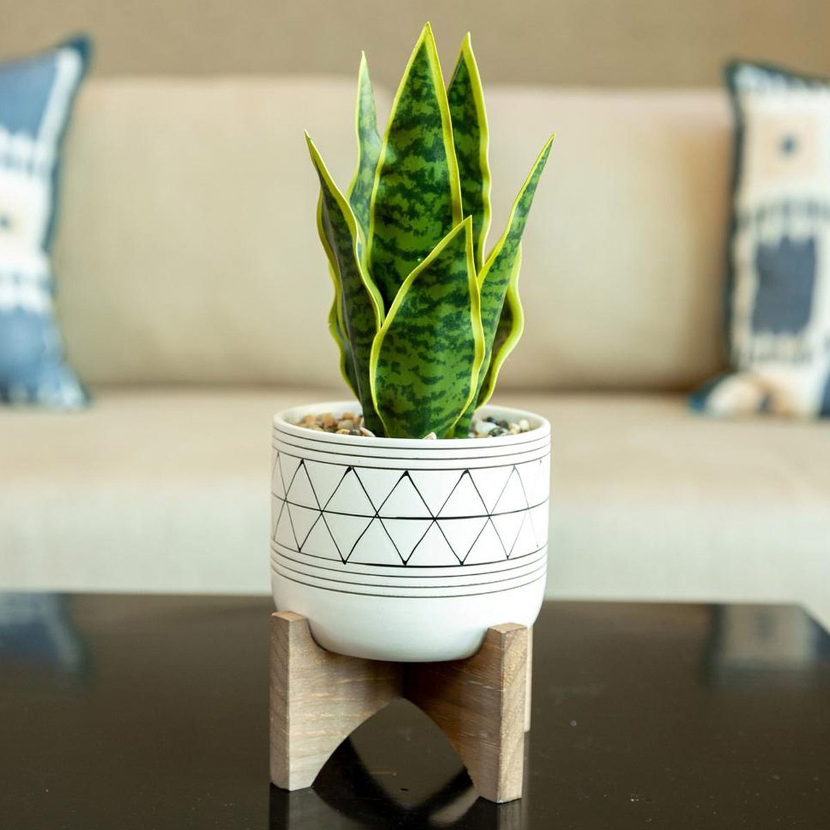 faux snake plant in pot