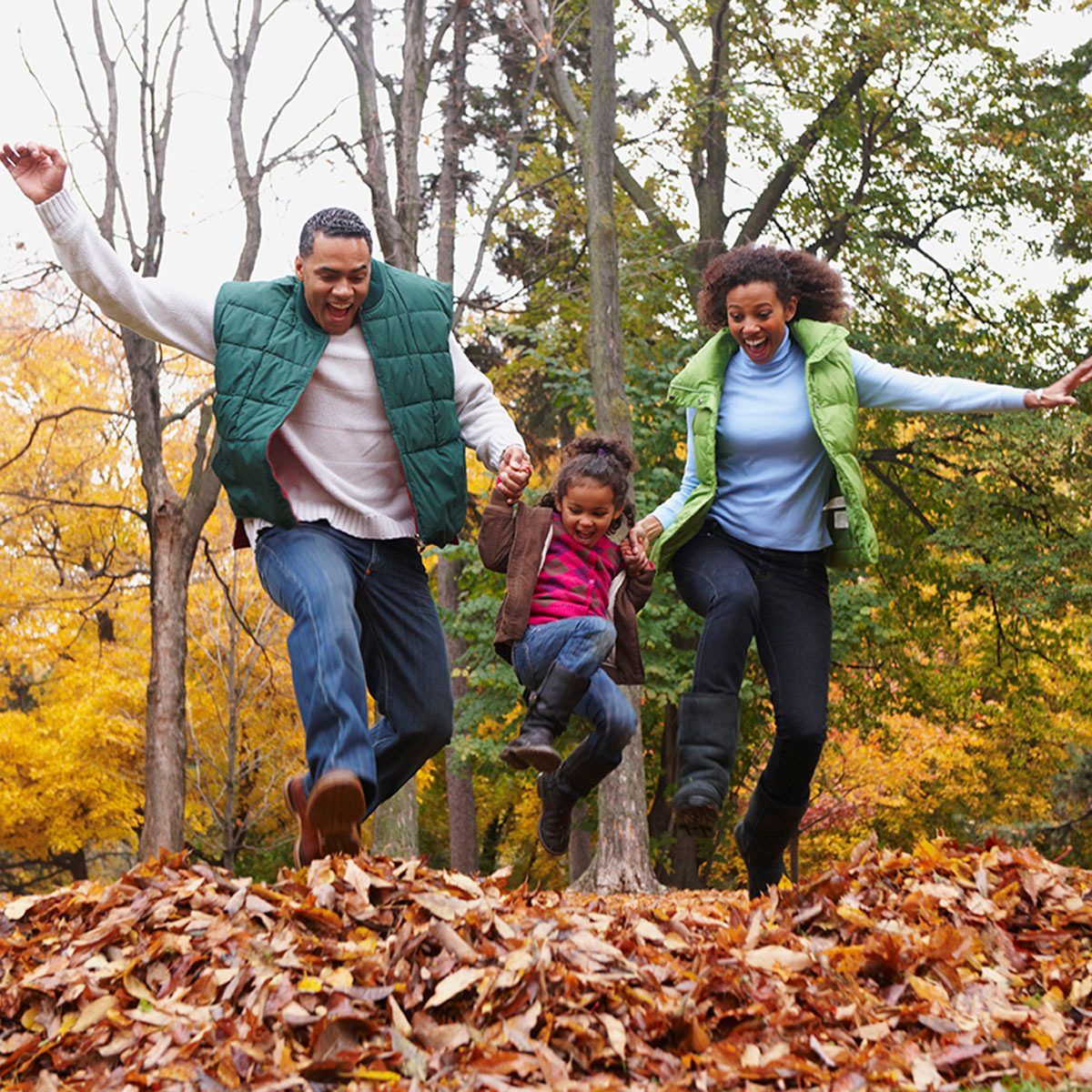Family Jumping Into Pile Of Autumn Leaves