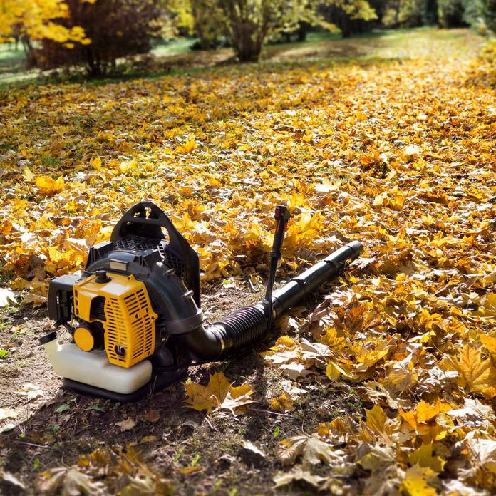 Leaf blower laying on the ground