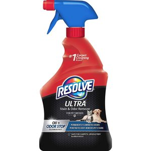The Best Carpet Cleaners for Pet Stains