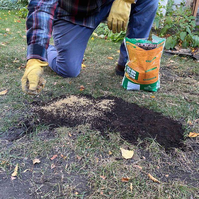 Add grass seed