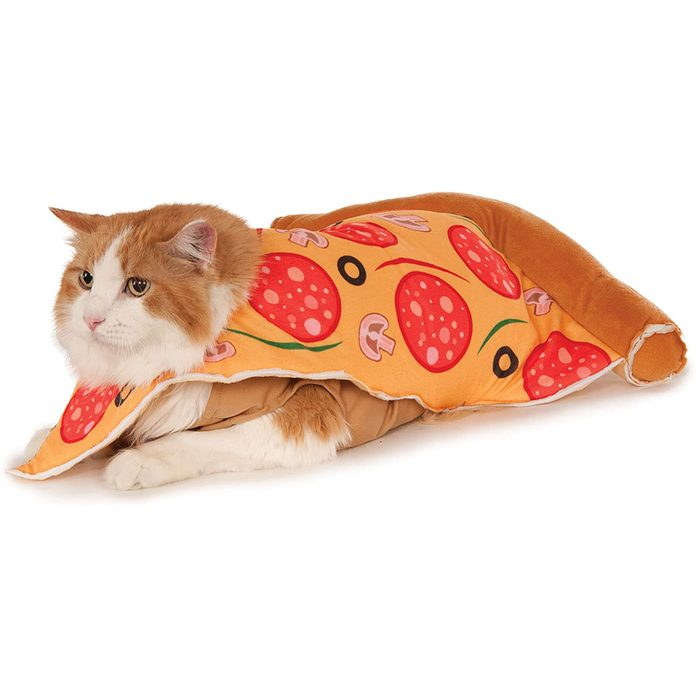 Pizza cat costume