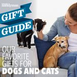 16 Perfect Gifts for Dogs and Cats