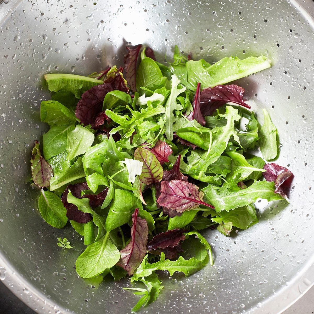 Washed salad in sieve