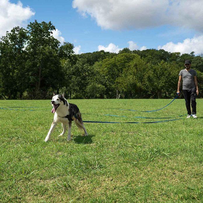 Long leash