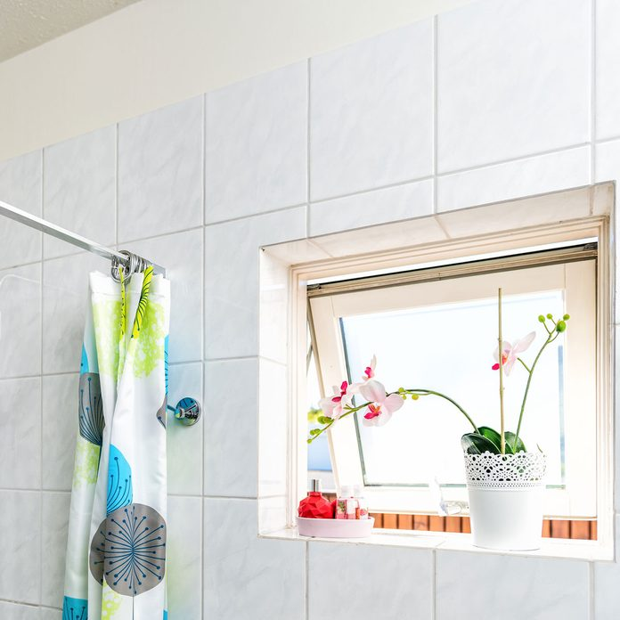 Open bathroom window with flowers