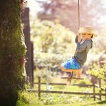 What to Know About Tree Swings
