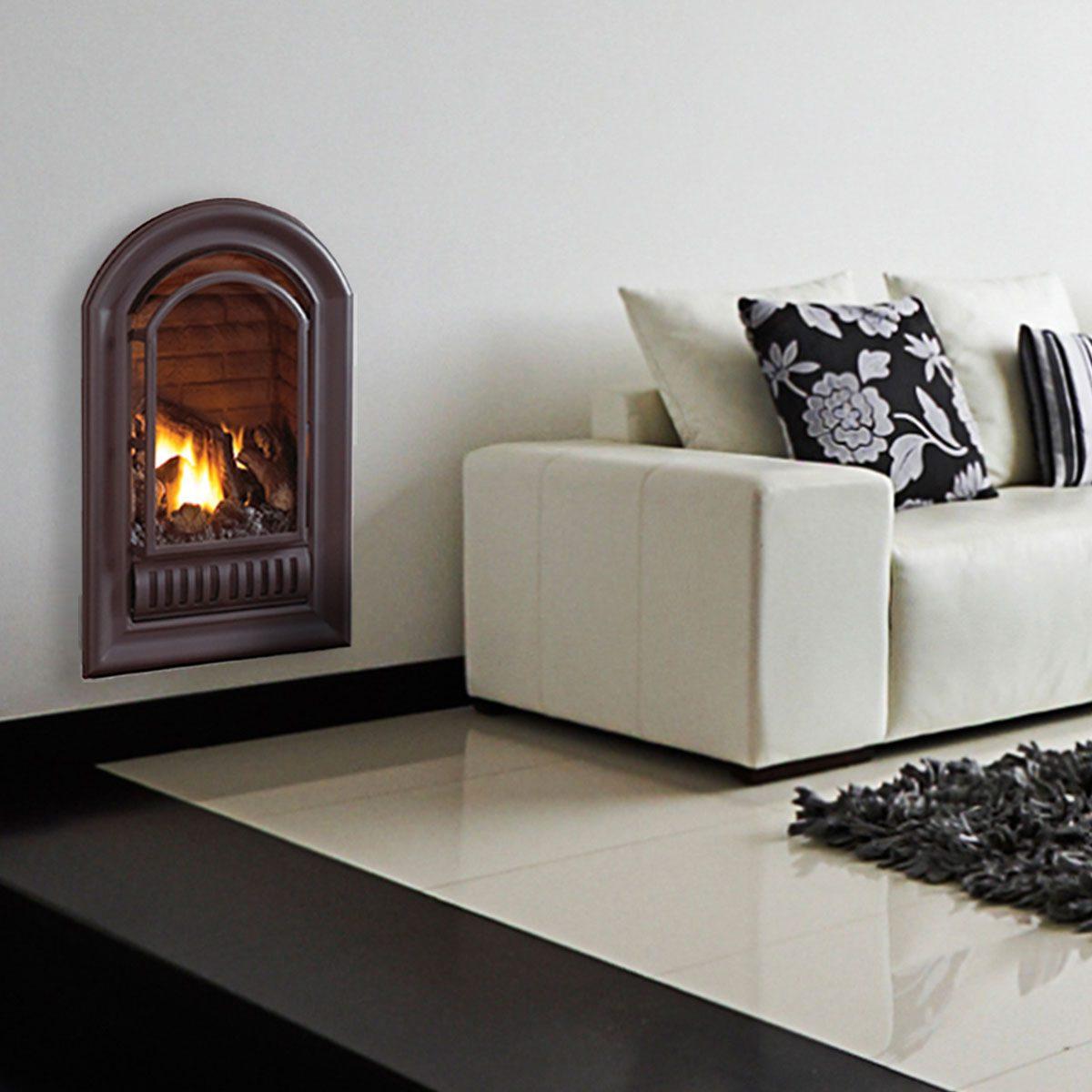 Gas Fireplace Insert Ani Ali 1 15461.1468857587.1280.1280