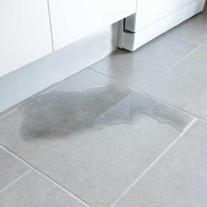Kitchen Floor Puddle
