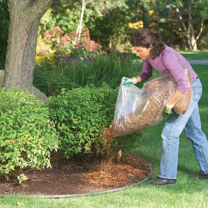 Applying Mulch
