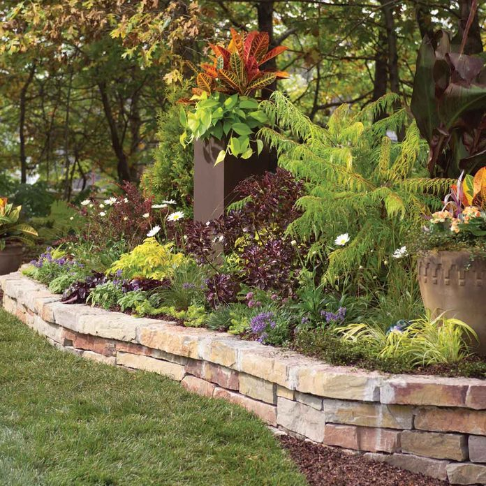Consider a Raised Bed