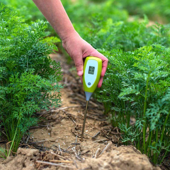 Testing Soil