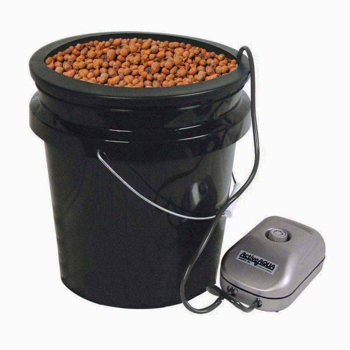 hydroponic plant kit