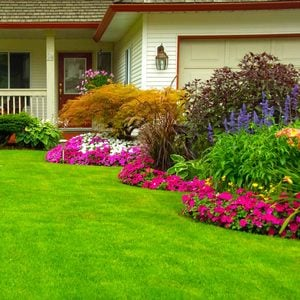 Landscape Design: Easy Ways To Improve Curb Appeal