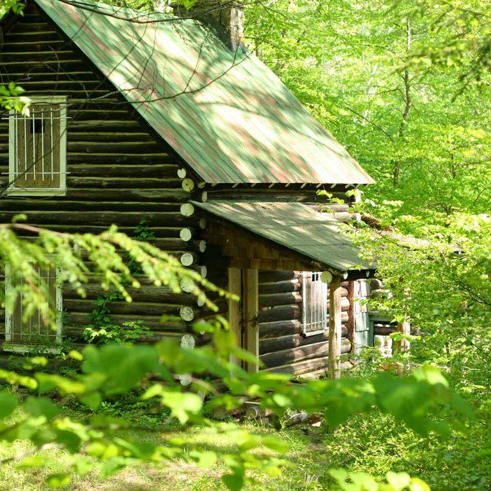 Spring Cabin