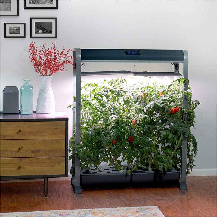 aerogarden farm hydroponic