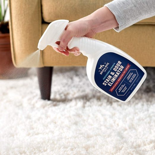 We Tried Amazon's Number One Dog Stain Remover on a Serious Dog Mess