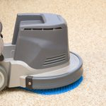 Carpet Cleaning: Pro Service vs. Renting Equipment?