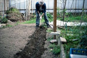 How to Till a Garden