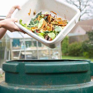 7 Best Compost Bins