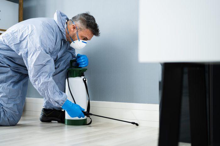 Pest Control Exterminator Spraying Pesticide inside home